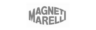 19 magneti