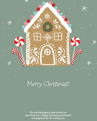 Bones Festes//Felices Fiestas //Merry Christmas!!! . . . #enjoy #holidays #christmas #time #2020 #particularagency